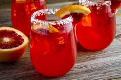 新鲜的血橙玛格丽塔酒 免版税库存图片