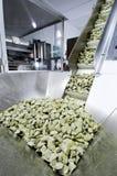 新鲜的行业意大利面食 免版税库存照片