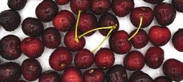 新鲜的被洗涤的樱桃 免版税库存照片