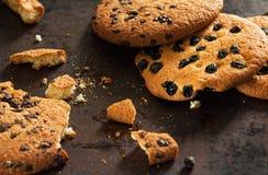 新鲜的被烘烤的曲奇饼用葡萄干和巧克力 免版税库存图片