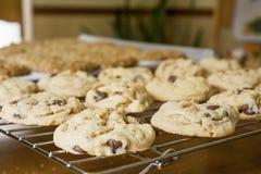 新鲜的被烘烤的曲奇饼 免版税库存照片