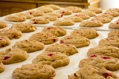 新鲜的被烘烤的曲奇饼 库存照片