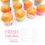 新鲜的被烘烤的杯形蛋糕 库存照片
