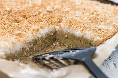 新鲜的被烘烤的椰子蛋糕 免版税库存照片