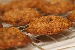 新鲜的被烘烤的燕麦粥巧克力曲奇饼机架 免版税库存照片