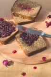 新鲜的被烘烤的自创健康面包用黑醋栗果酱-自创橘子果酱用从庭院的新鲜的有机果子 在土气12月 库存图片
