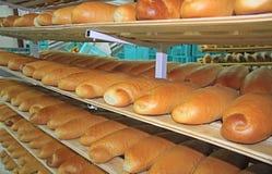 新鲜的被烘烤的面包在面包店 免版税库存图片