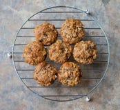新鲜的被烘烤的麸面松饼 免版税库存图片