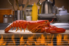 新鲜的被蒸的龙虾和烤肉格栅 库存照片