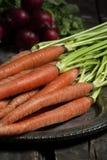 新鲜的被采摘的萝卜和红萝卜 免版税库存图片