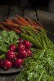 新鲜的被采摘的萝卜和红萝卜 库存图片