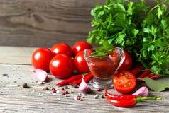 新鲜的西红柿酱和红色蕃茄用莳萝,荷兰芹,胡椒 免版税库存照片