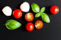 新鲜的西红柿,蓬蒿叶子,在黑sl的无盐干酪乳酪 图库摄影