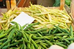 新鲜的豆 免版税库存照片