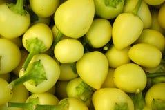 新鲜的辣椒绿色辣椒粉在开放的市场上 库存图片
