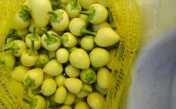 新鲜的辣椒绿色辣椒粉在开放的市场上 图库摄影