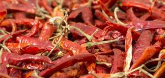 新鲜的辣红色辣椒辣椒,冷颤一起被堆积 库存照片