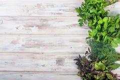 新鲜的辣草本,莳萝,蓬蒿,荷兰芹,薄菏 库存图片