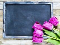 新鲜的郁金香花和空的黑板在木板条 库存图片
