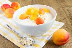 新鲜的酸奶用杏子 免版税库存照片
