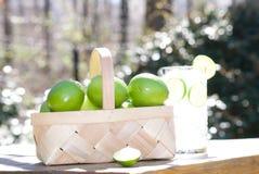 新鲜的采撷柠檬石灰篮子  免版税图库摄影