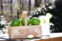 新鲜的采撷柠檬石灰篮子  图库摄影