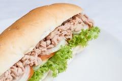 新鲜的金枪鱼三明治长方形宝石 库存照片