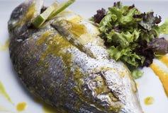新鲜的银色鲂服务用水煮的土豆和两不同蔬菜泥射击的10close 免版税库存照片