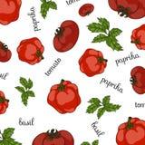 新鲜的集蔬菜 向量 库存例证