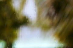 新鲜的雨飞溅在与背景绿色自然的一个窗口滴下在迷离 免版税库存图片