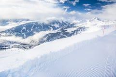 新鲜的雪盖的树在从基茨比厄尔滑雪胜地,奥地利的Tyrolian阿尔卑斯 免版税库存照片