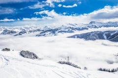 新鲜的雪盖的树在从基茨比厄尔滑雪胜地,奥地利的Tyrolian阿尔卑斯 免版税图库摄影