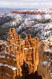 新鲜的雪覆盖布赖斯峡谷岩层犹他美国 库存图片