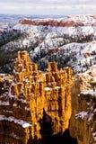 新鲜的雪覆盖布赖斯峡谷岩层犹他美国 图库摄影
