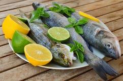 新鲜的雪鱼和goldline鱼 免版税图库摄影