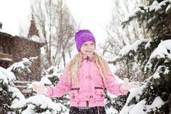 新鲜的雪 免版税库存照片