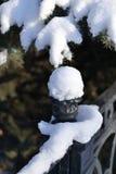 新鲜的雪 库存图片