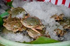 新鲜的青蟹在餐馆的待售 免版税库存照片