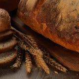 新鲜的面包 库存图片