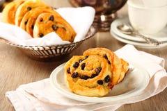 新鲜的面筋免费甜漩涡小圆面包用葡萄干 免版税图库摄影