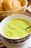 新鲜的韭葱汤 免版税库存照片
