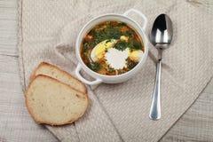 新鲜的饮食荨麻汤 免版税库存图片