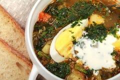 新鲜的饮食荨麻汤 库存照片