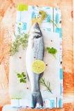 新鲜的鲈鱼用草本 库存照片
