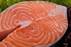 新鲜的鲑鱼排 免版税库存图片