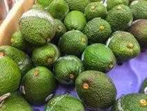 新鲜的鲕梨在市场上 图库摄影