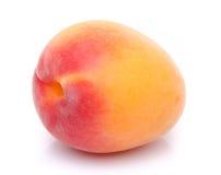 新鲜的鲜美杏子 库存照片