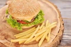 新鲜的鲜美汉堡和炸薯条 库存图片