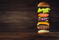 新鲜的鲜美汉堡的图象 免版税库存图片