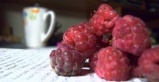 新鲜的鲜美红色开胃莓 免版税库存图片